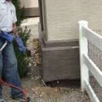 Spraying For Lawn Care AND Pest Control