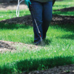 Spray Your Lawns Correctly