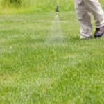 4 Insider Tips on Starting a Small Lawn Care Business
