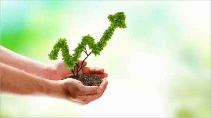Business growth in hands