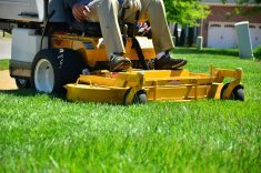 5 Questions to Ask Before Adding Lawn Care to Your Landscape Company